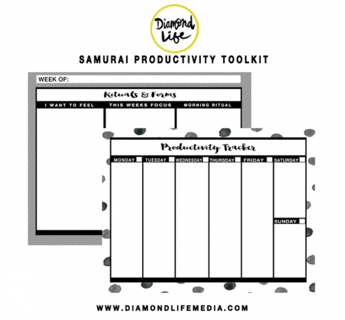 Diamond life media- Samurai Productivity toolkit
